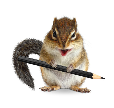 ludicrous: Funny chipmunk hold pencil, on white