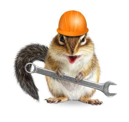 laughable: Funny handyman chipmunk worker with helmet and wrench isolated on white background