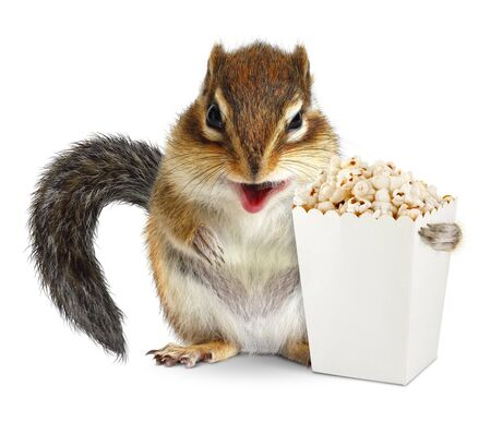 laughable: Funny chipmunk with blank popcorn bucket isolated on white
