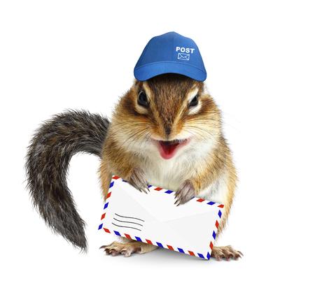 chipmunk: ardilla divertida cartero con la carta de correo a�reo en blanco Foto de archivo