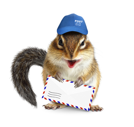 ludicrous: Funny postman chipmunk with air mail letter on white