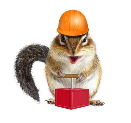 laughable: Funny animal chipmunk with detonator, demolition concept Stock Photo