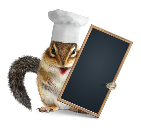 laughable: Funny chipmunk with chef cook hat hold menu blackboard Stock Photo