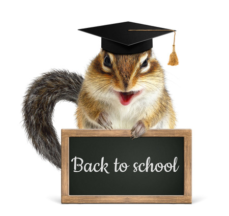 laughable: Funny chipmunk hold blackboard, back to school concept on white