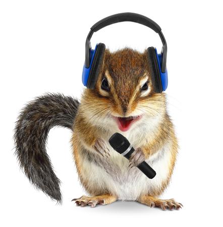 ardilla: Dj ardilla divertida con auriculares y micrófono Foto de archivo