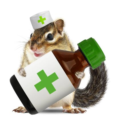 medications: Funny chipmunk with veterinarianhat hold bottle medications
