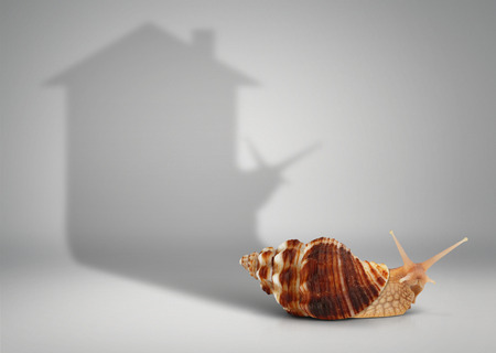 movable: Real estate concept, snail with shadow house on grey Stock Photo