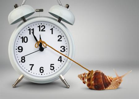 Snail pulling clock, time management concept