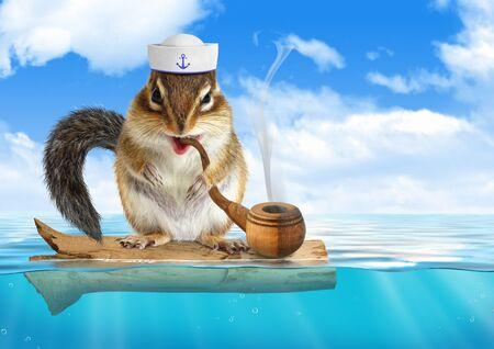 Funny chipmunk dressed sailor, floating ocean