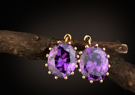Jewelry earrings with gems on twig, dark background