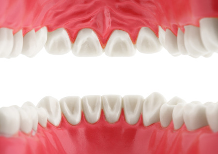 teeth, view from mouth, isolated with path Stock Photo