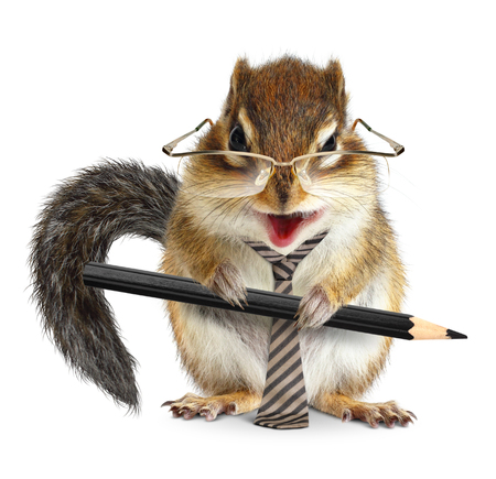animal businessman, chipmunk with tie and pencil