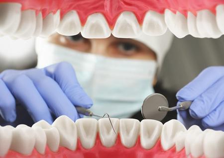 치과 검사 개념, 내부 입보기