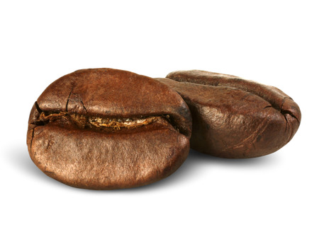 closeup two coffee beans isolated on white, path
