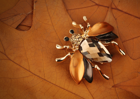 Jewelry bug brooch with gemstone on yellow leaves  background