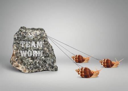 Concepto de trabajo en equipo, grupo de caracoles tirando piedra