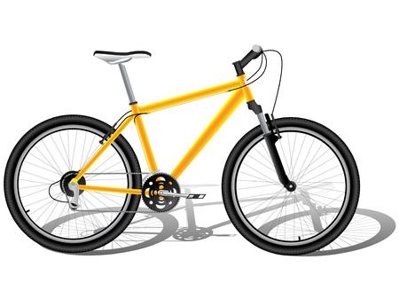 mountain bicycle: Biciclette di montagna Vettoriali