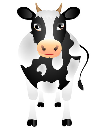 The Black-and-white isolated cow