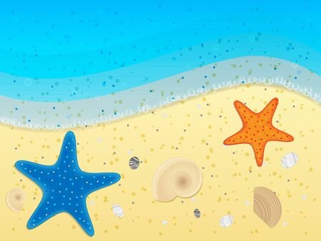 Shells and starfishes on sand background. Vector illustration.  Illustration