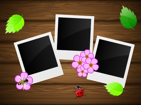 Photo frame with flowers, ladybird, bee and green leaves on wooden background  Vector illustration  Vector