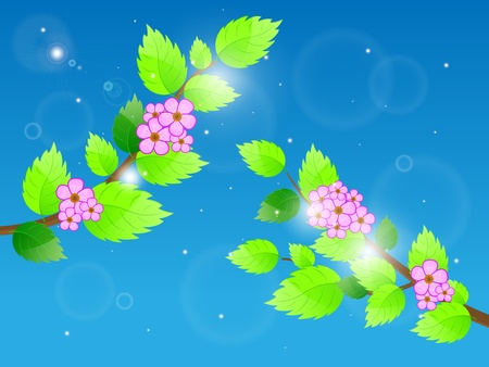 Cherry blossom against blue sky illustration