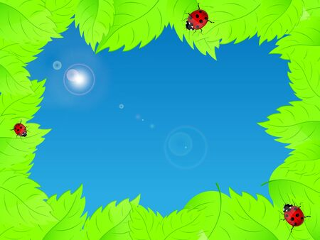 Background with fresh green leaves and ladybirds  Illustration