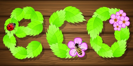 Eco background with flowers illustration  Vector