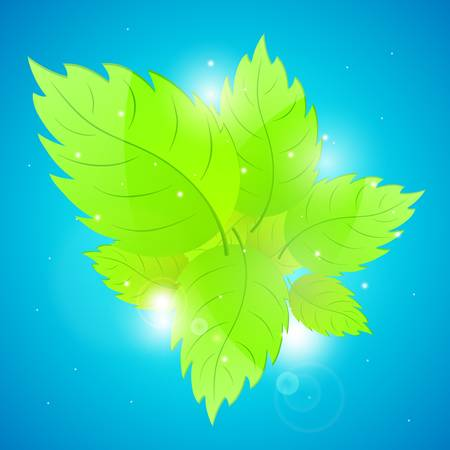 Background with fresh green leaves illustration