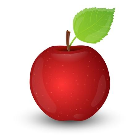 apple leaf: Red apple isolated on white background   Illustration