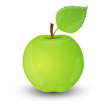 green apple isolated: Green apple isolated on white background  Illustration