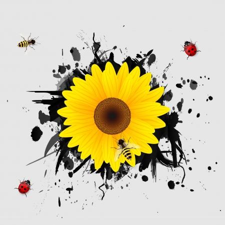 Sunflower on black background   Vector