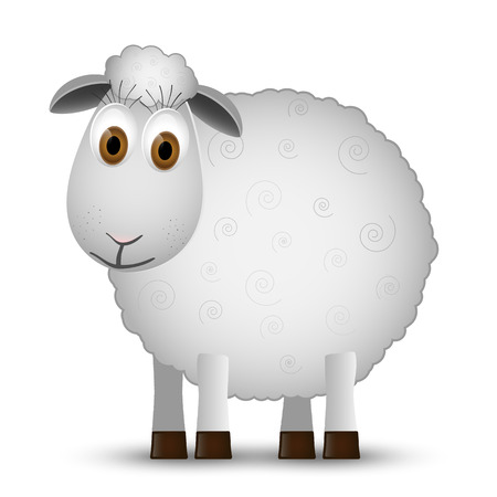 sheep wool: Sheep isolated on white background. Illustration