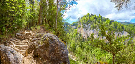 Panorama of a fabulous mountain forest with a view of the canyon and a dry waterfall