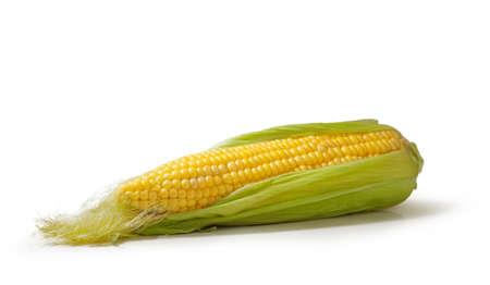 Open cob of fresh ripe corn on a white background