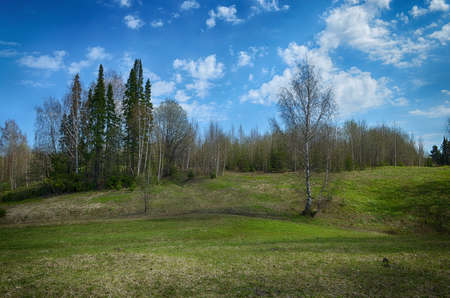 room for copy: Image with room for copy space of hills, trees, green grass and blue sky with white fluffy clouds Stock Photo
