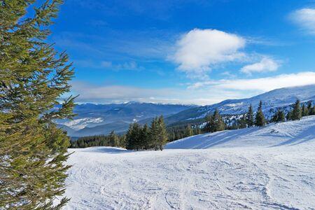 Freeride in carpathians mountain. Dragobrat Ski resort