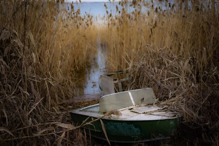 Rusty old abandoned boat in reeds