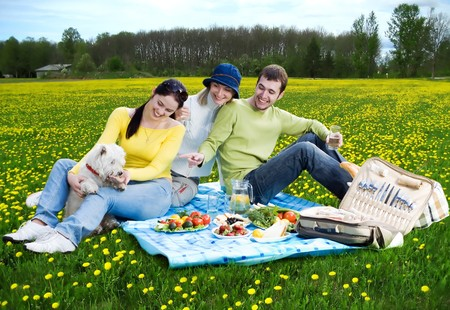 three friends with little white dog at picnic