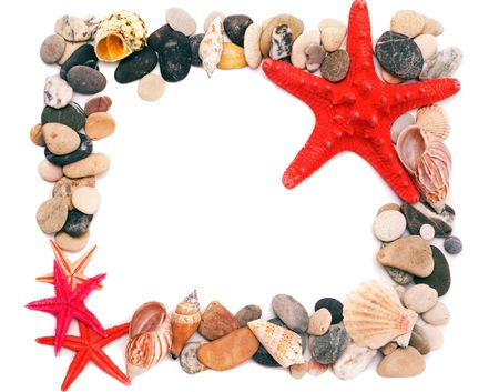 clam beds: Seashells on sand picture frame Stock Photo