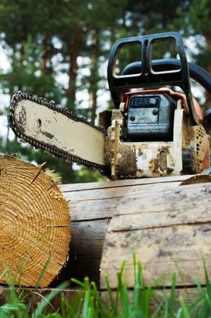 Chainsaw on wood cuttings photo