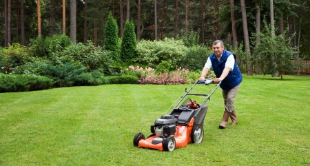 lawn mowing: Senior man mowing the lawn. Stock Photo
