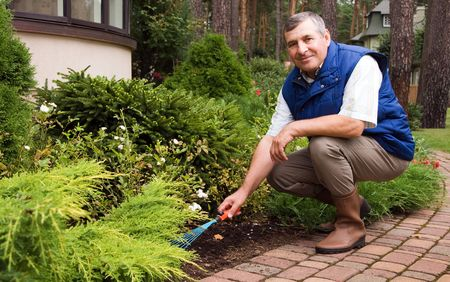 Man raking garden Stock Photo