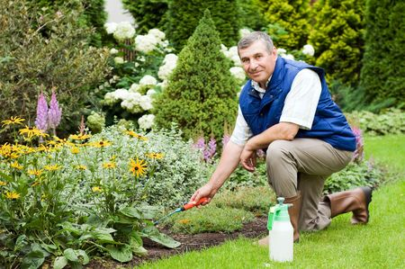 Man raking garden  Stock Photo