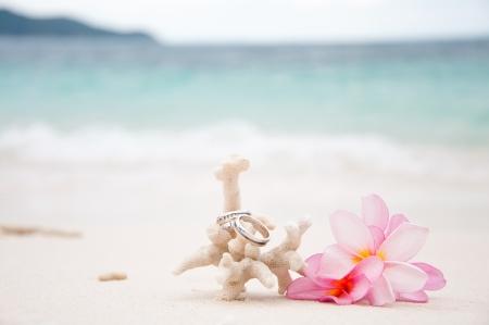 luna de miel: Dos anillos de boda en Coral frente a la orilla del mar Foto de archivo