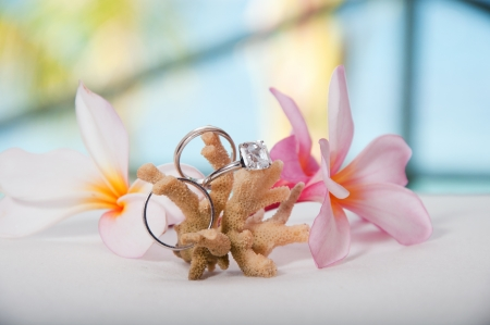 Two wedding rings on coral in front of the seaside  Stock Photo