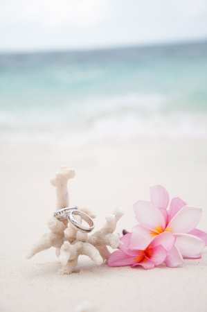 bodas de plata: Dos anillos de bodas en coral frente a la playa