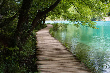water grass: old wooden footpath with blue water grass and trees in National Pak Plitvice Lakes in Croatia