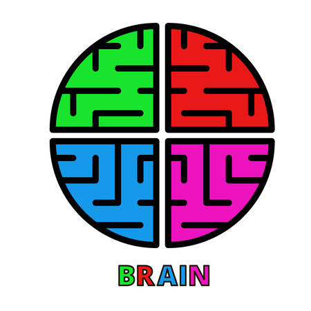 cerebrum: colorful brain with four portions on white background Illustration