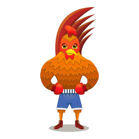 Rooster boxer in gloves on white background