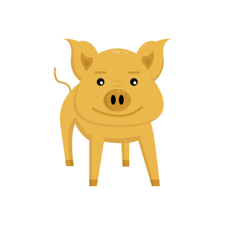 orange pig smiles and stands on white background 向量圖像